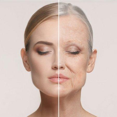 Skincare Influencer Course